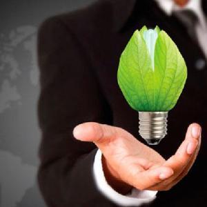 Sustentabilidade para empresas: 20 dicas simples